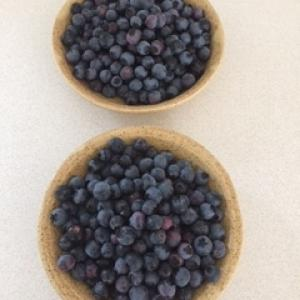 Blueberries in handmade dishes