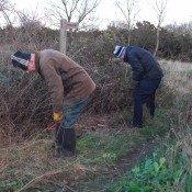 Clearing a bridleway